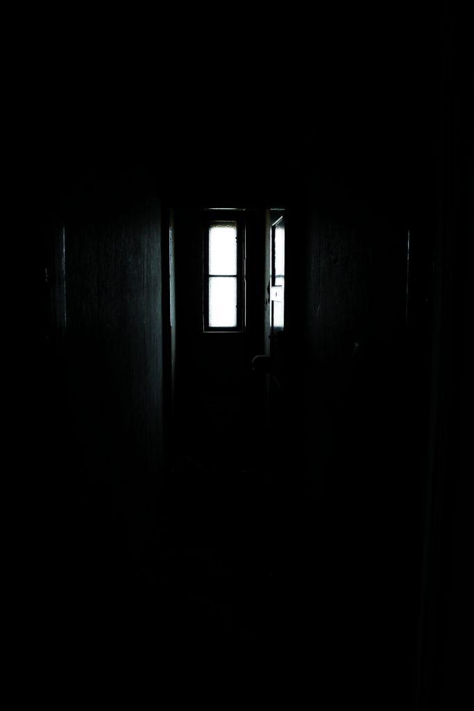 Kristin Franke: Darkness